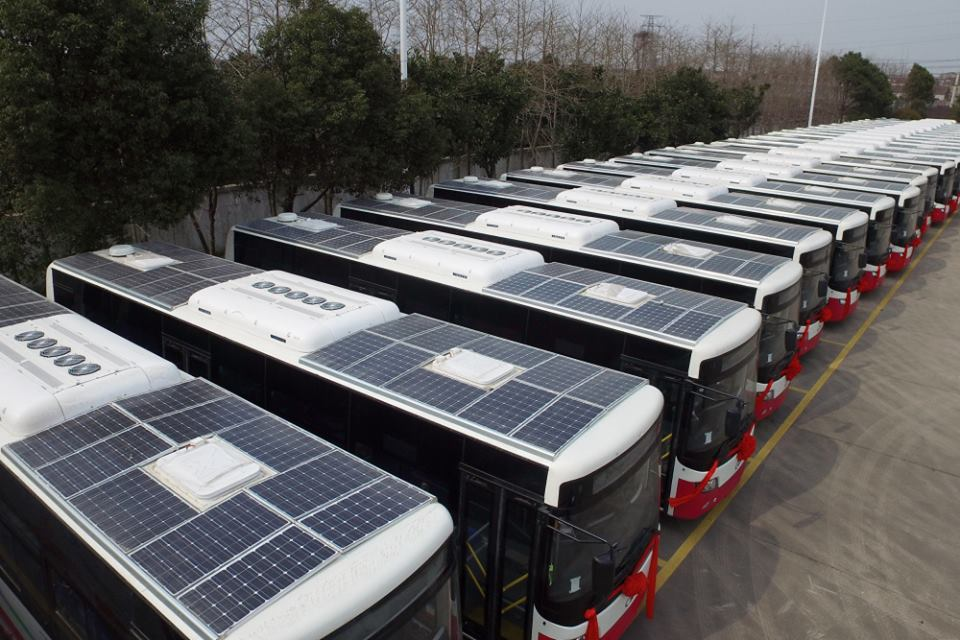 Solar Buses In China Richard Priestley