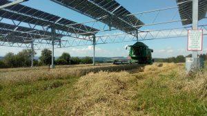solar & farming